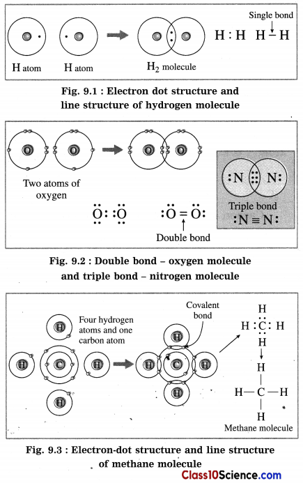 Carbon Compounds Science Notes 1