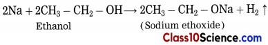 Carbon Compounds Science Notes 10