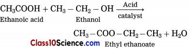 Carbon Compounds Science Notes 14