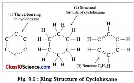 Carbon Compounds Science Notes 3