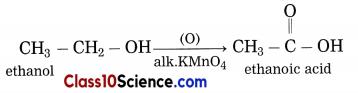 Carbon Compounds Science Notes 7