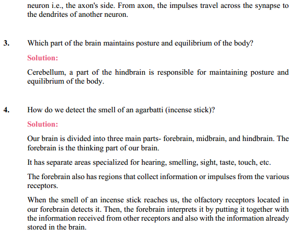 NCERT Solutions for Class 10 Science Chapter 7 Control and Coordination 13