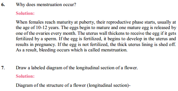 NCERT Solutions for Class 10 Science Chapter 8 How Do Organisms Reproduce 4