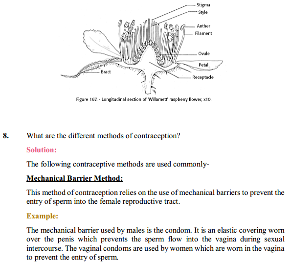 NCERT Solutions for Class 10 Science Chapter 8 How Do Organisms Reproduce 5
