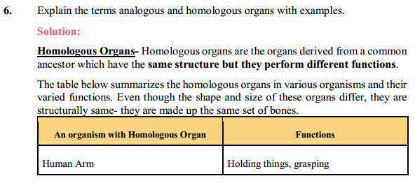 NCERT Solutions for Class 10 Science Chapter 9 Heredity and Evolution 4